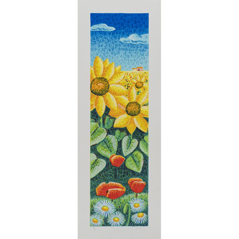 Mimmo Sciarrano – Campo – Serigrafia 25×70