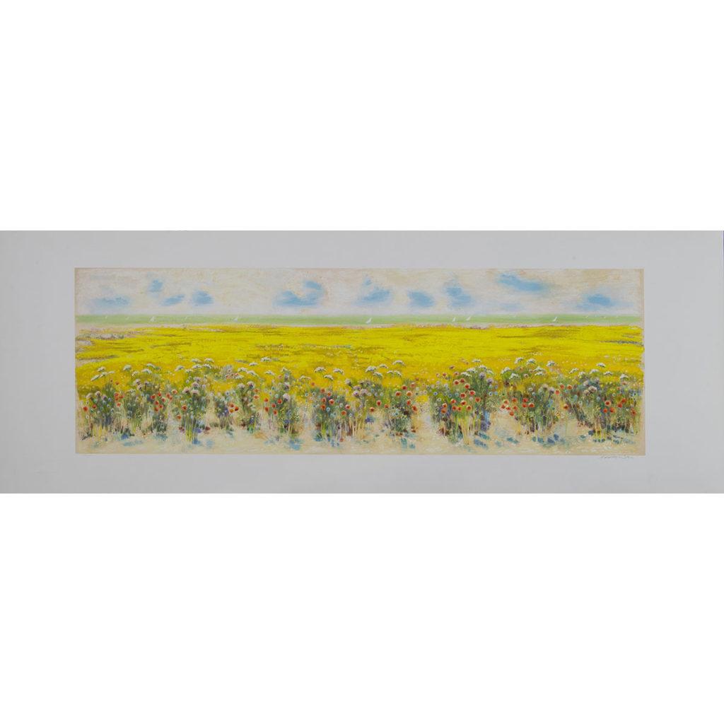 Natale Addamiano - Grande campo in fiori - Serigrafia 50x140cm
