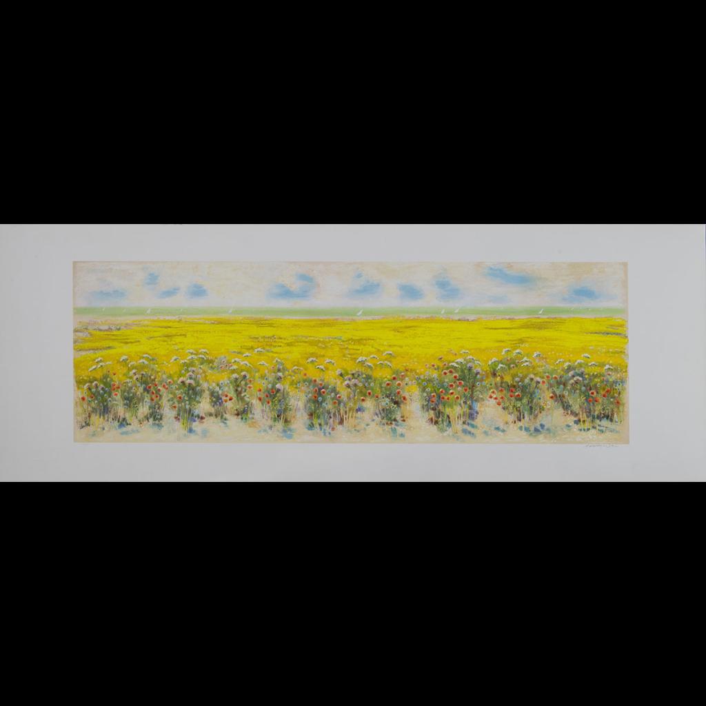Natale Addamiano - Grande campo in fiori - Serigrafia 50x140