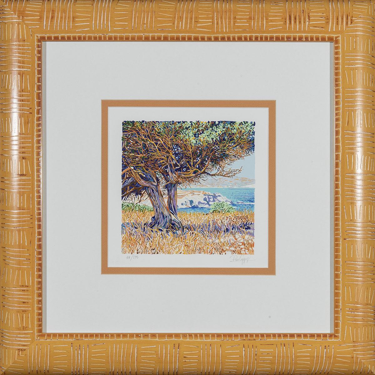 Pino Cappugi - Albero A Milos - Serigrafia Polimaterica 57x57cm